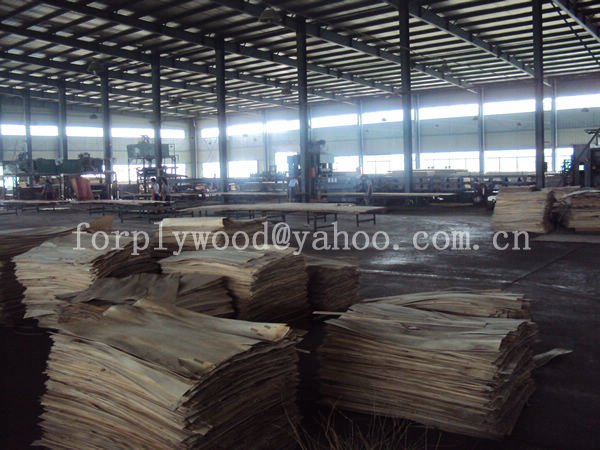 ,JIANGSU SHENQIAN PLYWOOD CO.,LTD